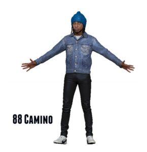 88 Camino2